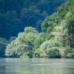 spływ pontonowy dla szkół, bezpieczny spływ dla dzieci, spływy pontonowe w Bieszczadach