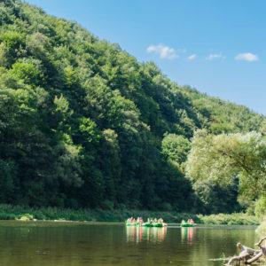 Zieleń otaczająca rzekę zachwyca podczas spływu.