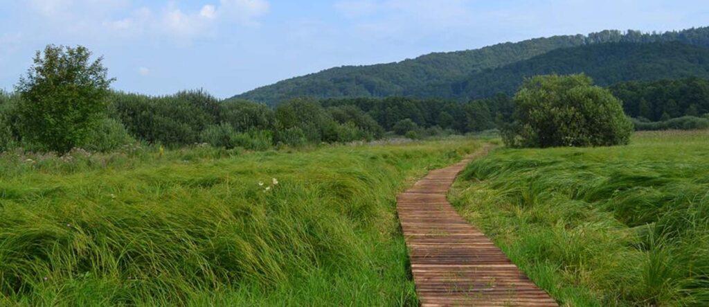 Piękne widoki - ścieżka przyrodnicza w Sanoku.