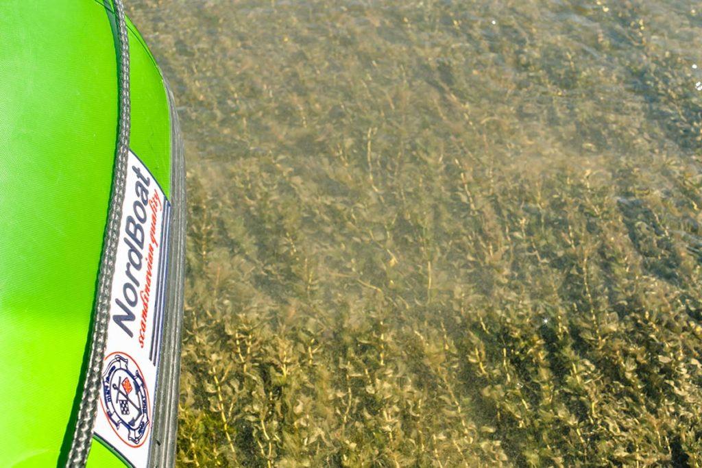 wycieczka-splywy-sanem-atrakcje-wakacje-bieszczady-zielony-ponton-san-4