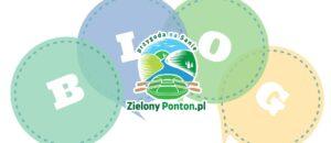 Zielony ponton - spływy Sanok.